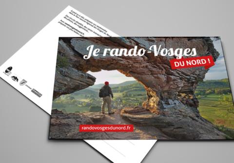 Identité visuelle d'un projet pour le Parc naturel régional des Vosges du Nord