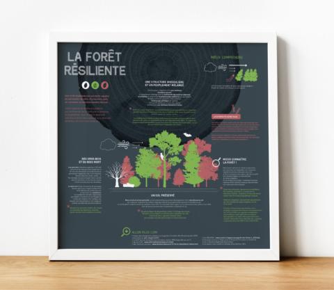 Affiche pour le Parc naturel régional des Vosges du Nord